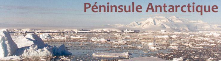 Entre chenal Neumayer et chenal Lemaire (Péninsule Antarctique)